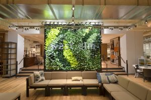 living-green-plant-wall-west-elm