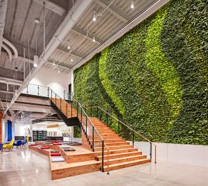 vertical-plant-wall-office